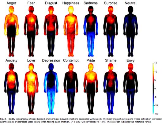emozioni corpo 2